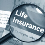 What Percentage Of Life Insurance Policies Pay Out - How It Works